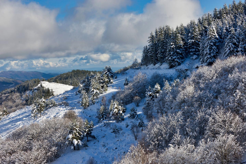Alain Brasseur - Bel hiver / 3