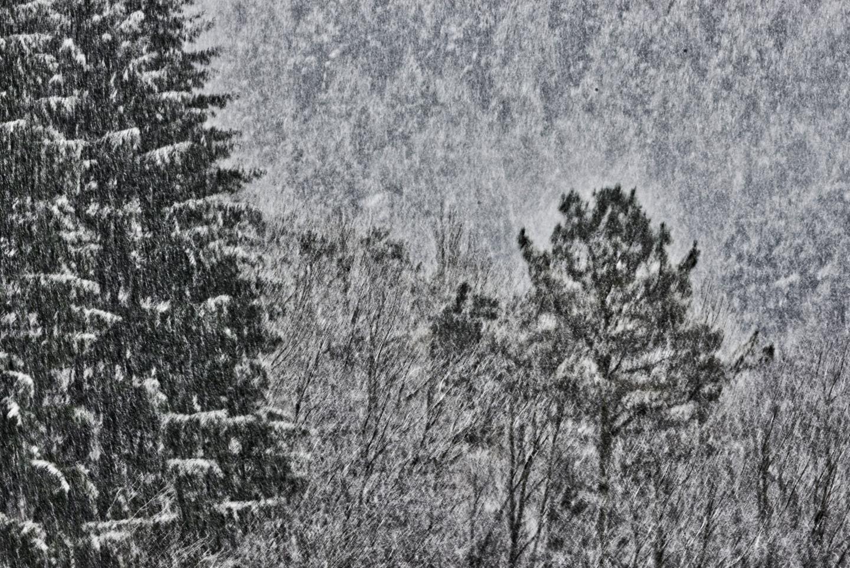 Alain Brasseur - Bel hiver / 5