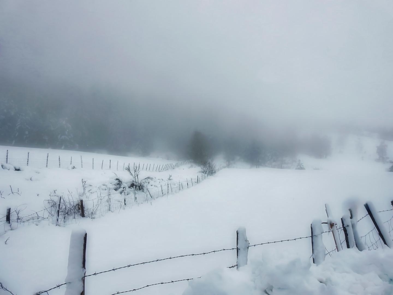Alain Brasseur - Bel hiver / 16