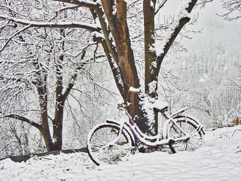 Alain Brasseur - Bel hiver / 18