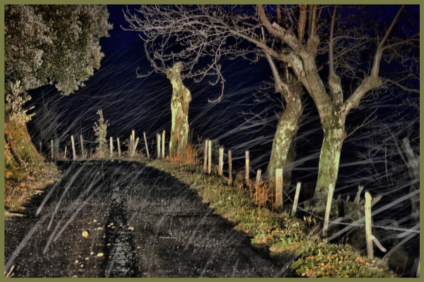ALAIN BRASSEUR - Le bel hiver.....63