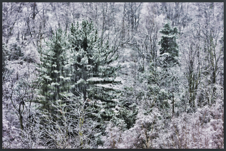 ALAIN BRASSEUR - Le bel hiver.....70