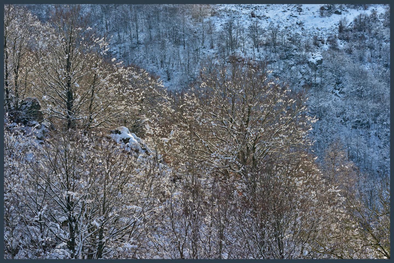 ALAIN BRASSEUR - Le bel hiver.....73