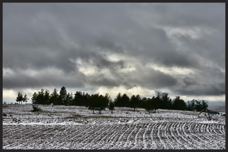 ALAIN BRASSEUR - Le bel hiver.....74