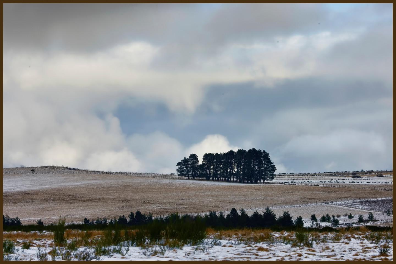 ALAIN BRASSEUR - Le bel hiver.....85