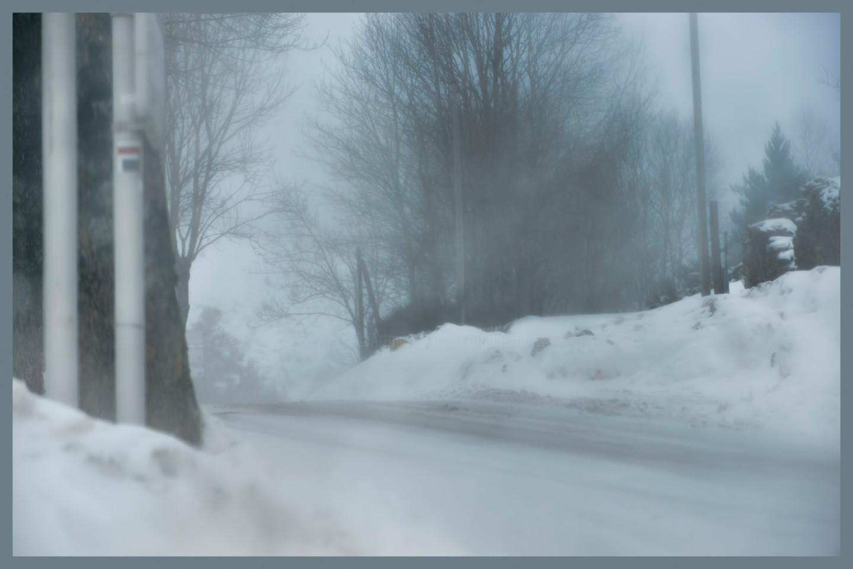 ALAIN BRASSEUR - Le bel hiver.....100