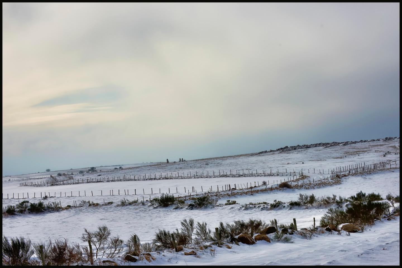 ALAIN BRASSEUR - Le bel hiver.....06