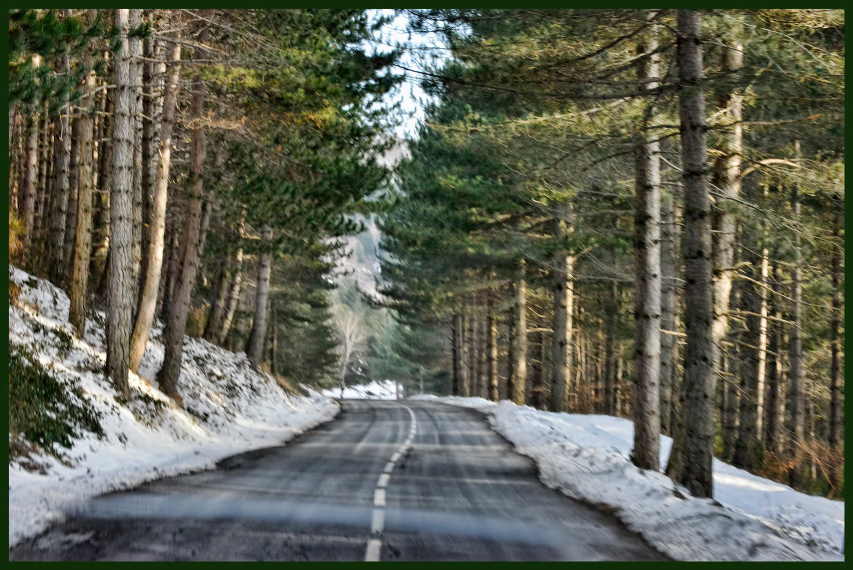 ALAIN BRASSEUR - Le bel hiver.....14