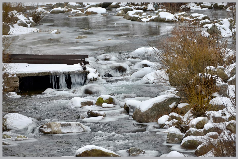 ALAIN BRASSEUR - Le bel hiver.....10