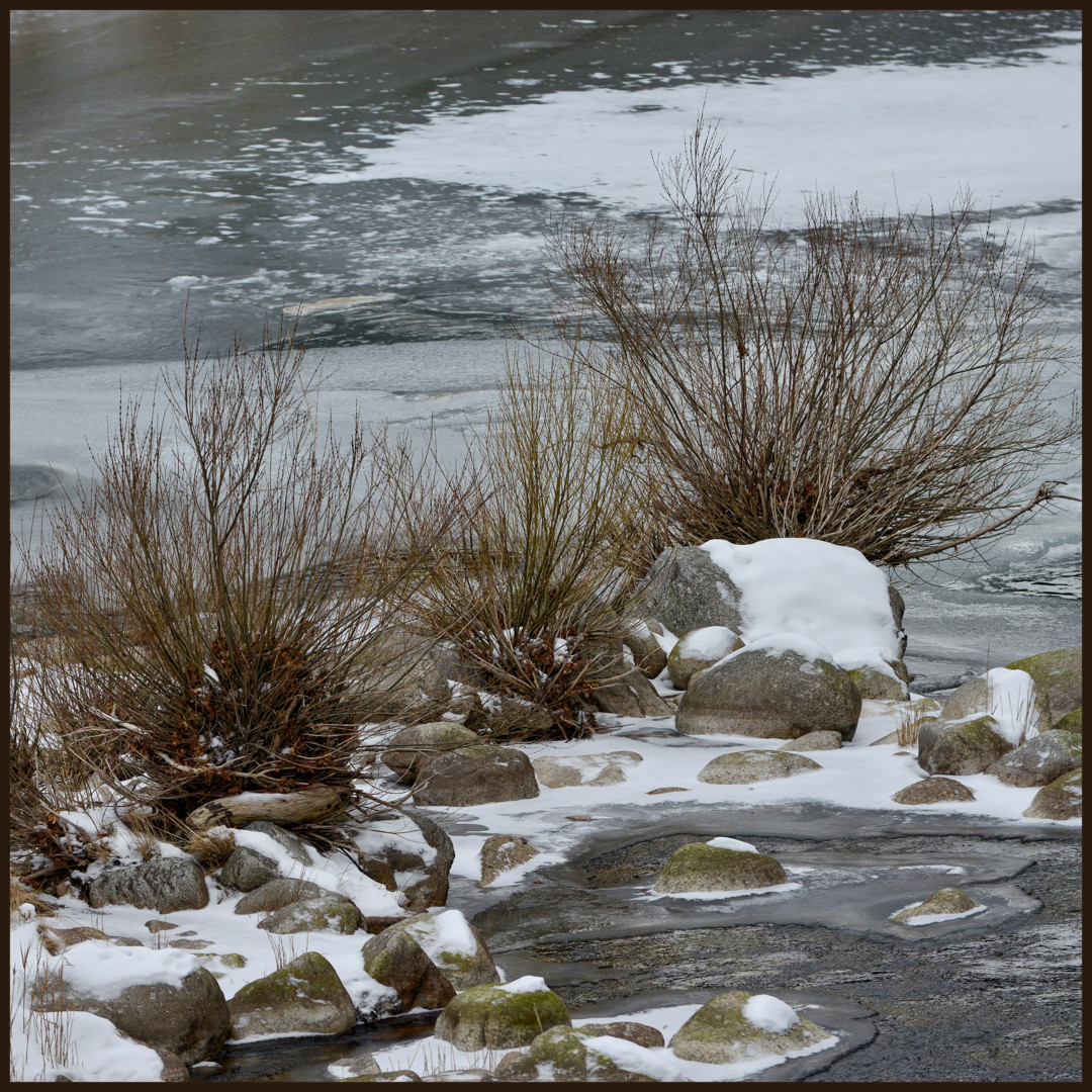 Alain Brasseur - Le bel hiver.....206