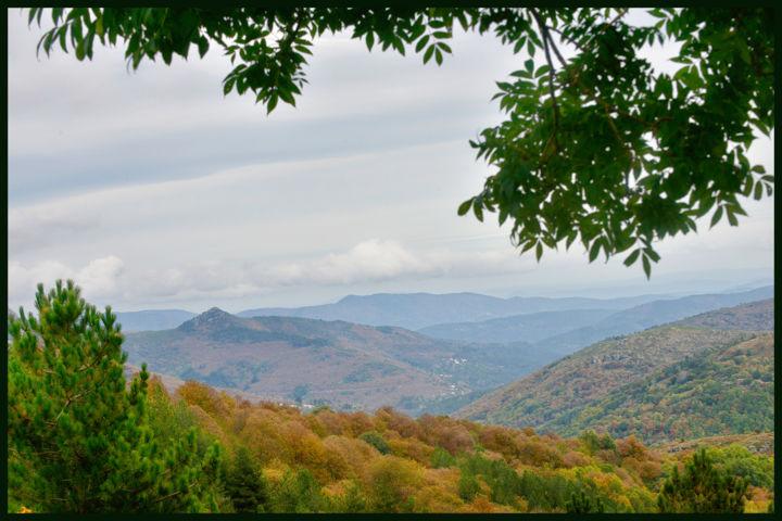 ALAIN BRASSEUR - L'automne en Cévennes
