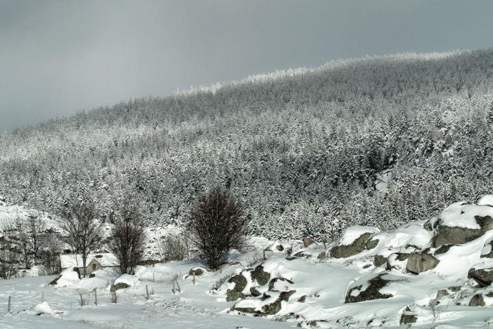 ALAIN BRASSEUR - Le bel hiver 235