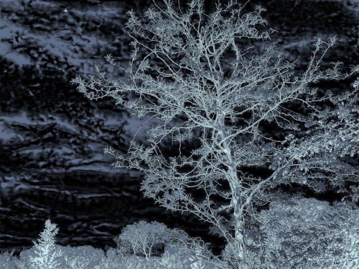 ALAIN BRASSEUR - Un rêve en bleu